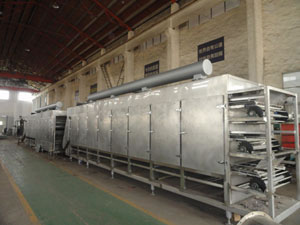 DWC Multilayer Conveyor Dryer Machine